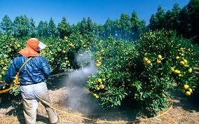 Removing Pesticides
